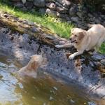 Saaremaal: Lissi ujumas ja Janet teda kaldal kiusamas