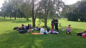 Juhtkoerakasutajad ja koerad puu all muruplatsil puhkamas