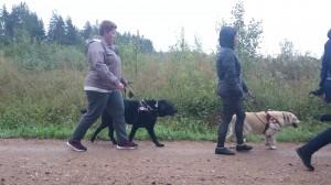 Gerli&Matthias ja Kai&Janet kõndimas