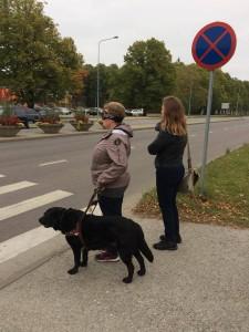 Mathias, Gerli Kangur ja Maria Soonberg vöötrajal